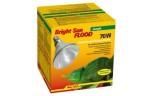 Lucky Reptile Bright Sun FLOOD Jungle 70W