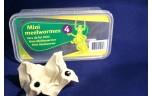 Mini meelwormen, doosje 25 gr