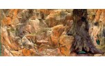 Diversa Backwall normal, 120 x 50 cm