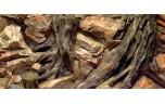 Diversa Backwall root, 100 x 50 cm
