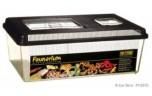 Faunarium, Plastic Terrarium, Large