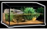 Exo Terra Turtle Terrarium 45 x 45 x 30 cm