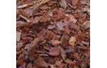 EuroZoo, TerraPlus Pine Bark Litter, 8 l