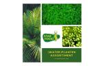Pakket hoog wordende planten